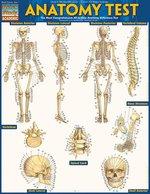 QS Anatomy Test