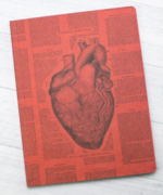 "Notebook Softcover 6.75""x9"" Anatomical Heart Lined"